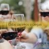 Catas de vinos a ciegas, el juego del 2019