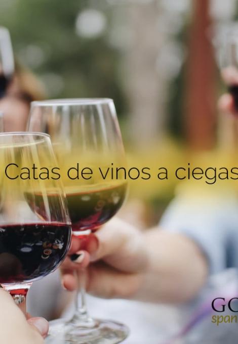 cata-vinos-gourmentia-juego-diversion.jpg